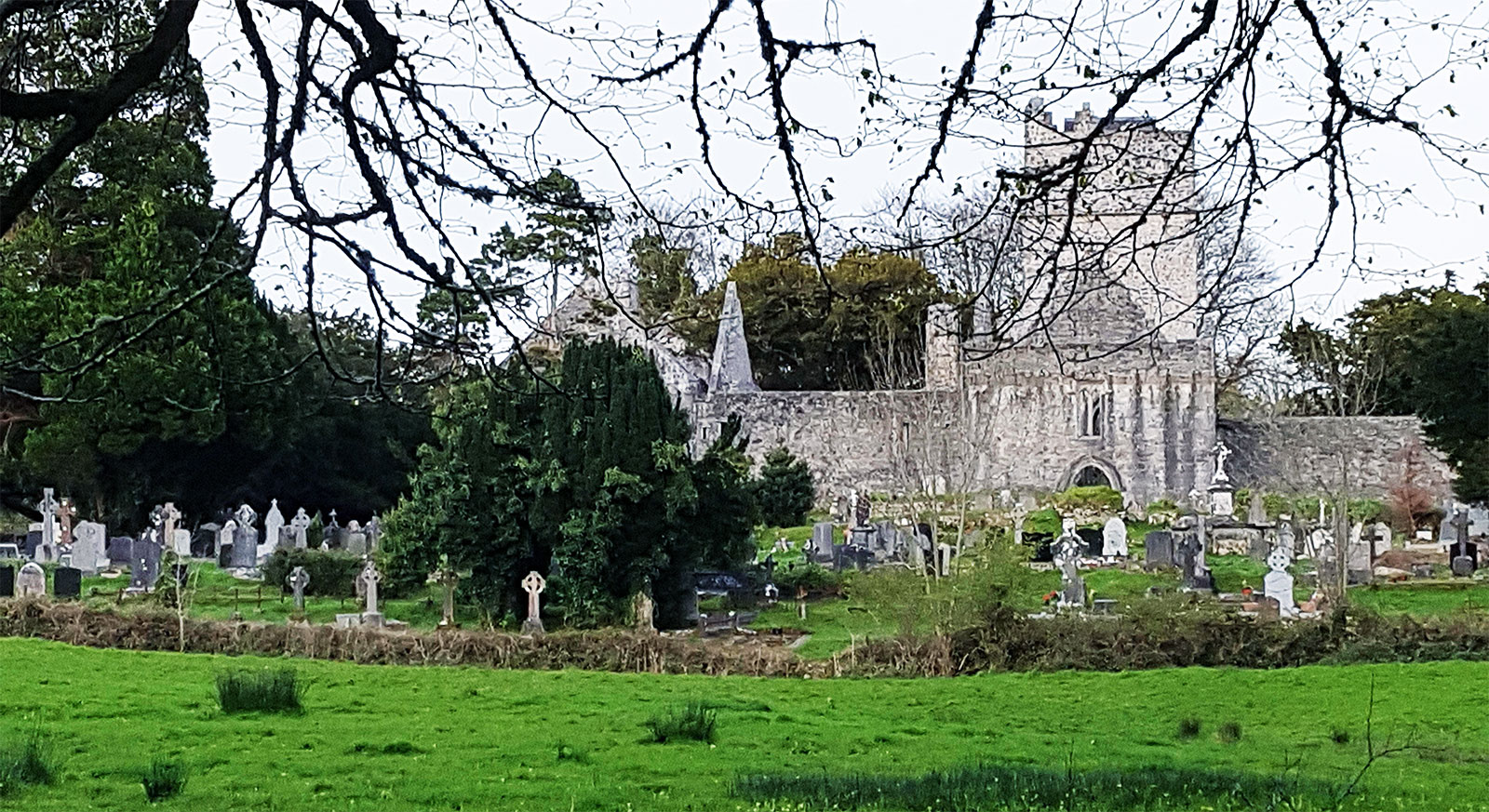 Muckross Abbey, Killarney, Co. Kerry